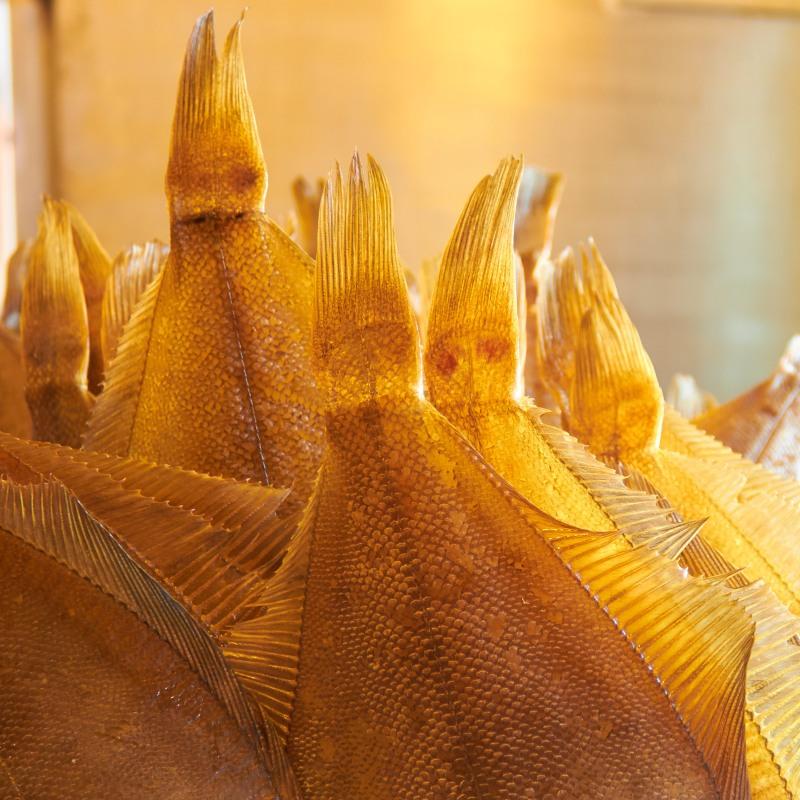 Ribe 169